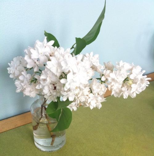 lilac-vase