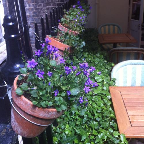 flowerpots-front